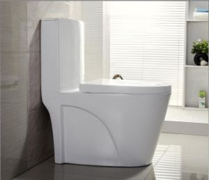 Super White Glaze One Piece Washdown Water Closet / Toilet pictures & photos