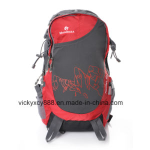 Fashion Leisure Double Shoulder Outdoor Sports Laptop Notebook Backpack (CY3704) pictures & photos