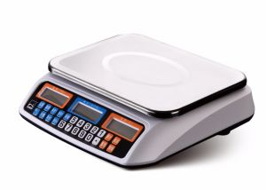 Portable Electronic Scale Hand Scale Hand Carry pictures & photos