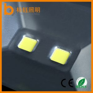 High Power Flood Lamp Outdoor & Indoor COB Interior Lighting 100W Flood Light pictures & photos
