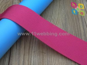 Polyester Fake Nylon / Polypropylene Webbing for Backpack Straps Luggage Strap pictures & photos