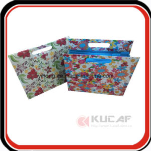 Custom Elastic Closure Expanding File Cardboard Folder pictures & photos