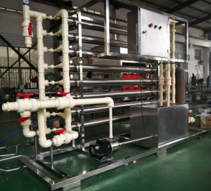 Mineral Water Treatment Plant (WT-1000) pictures & photos