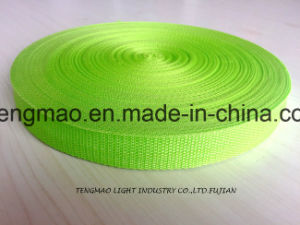 "1"" Green PP Webbing for School Bags pictures & photos"