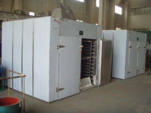 Fruit and Vegetable Dehydration Machine Hot Air Circulating Oven for Sale