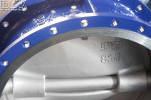 Worm Gear Operated Flanged Butterfly Valve pictures & photos