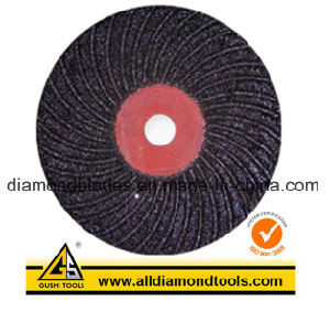Semi-Flex Fibre Disc pictures & photos
