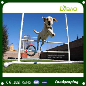 Good Drainge System Artificial Grass for Pets pictures & photos