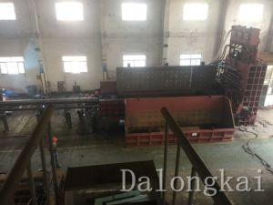 Q91y-1000 Heavy Duty Shear Machine pictures & photos