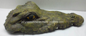 Croc Floating Mouth Closed pictures & photos
