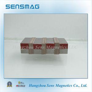 Cusomized Strong Powerful Permanent Samarium Cobalt Magnet for Generator pictures & photos