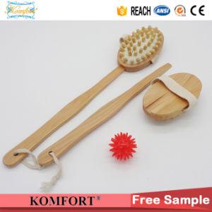 Wet Boar Bristle Skin Scrubber SPA Leg Exfoliating Bath Body Brush (JMHF-92) pictures & photos
