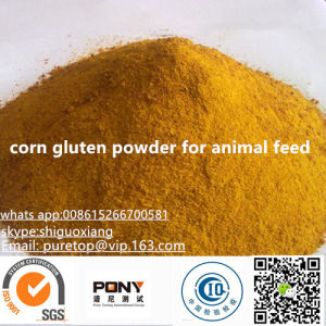 Corn Gluten Meal 60n for Chicken Feed pictures & photos