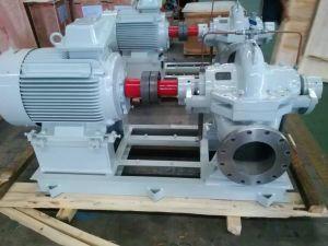 HS (V) Series Energy Saving Double Suction Centrifugal Split Casing Pump (HS125-80-125A) pictures & photos