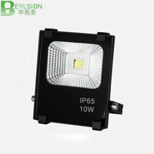 10W Waterproof COB LED Floodlight pictures & photos