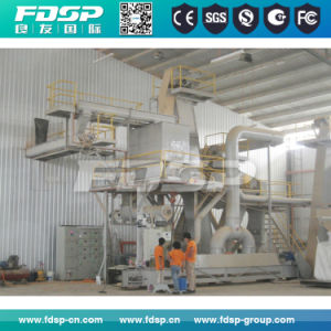 CE Approved Green Energy Fuel Wood Pellet Processing Plant pictures & photos