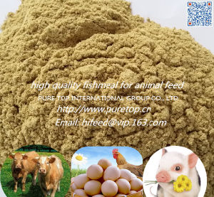 Fish Meal with High Protein for Animal Feed (export grade) pictures & photos