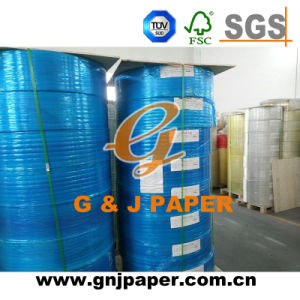 China Multi-Ply Jumbo Roll Carbonless NCR Paper pictures & photos