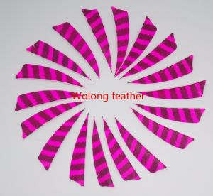 3 Inch Striated Right Wing Shield Feather for Archery Double Color Barred pictures & photos