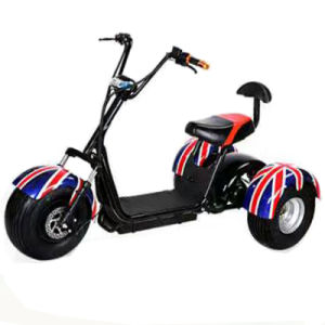 Factory Sales 2017 New Electric Tricycle for Cargo pictures & photos