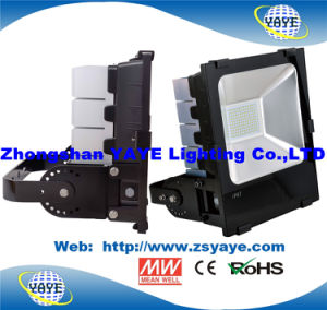 Yaye 18 CREE/Meanwell 150W LED Flood Lighting / 150W LED Tunnel Lighting with 5 Years Warranty pictures & photos