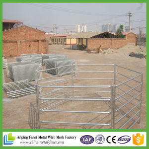 Hot Dipped Galvanized Used Horse Corral Panels for Sale pictures & photos