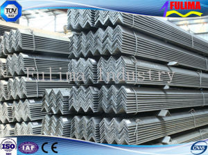Galvanized Durable Angle Steel for Building Materials (SSW-AS-001) pictures & photos
