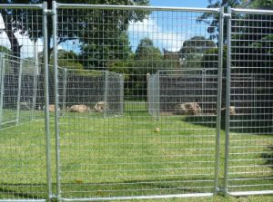 The Most Popular Temporary Fence in 2015 Xm-02 pictures & photos
