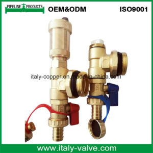 Customized Quality Brass Forged Air Vent Valve (IC-3074) pictures & photos