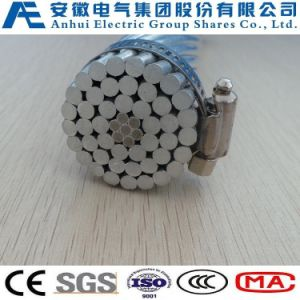 Sparrow/Aw, ACSR/Aw, Aluminum Conductor Aluminum Clad Steel Supported pictures & photos