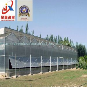 Venlo Style Polycarbonate Sheet Greenhouse pictures & photos