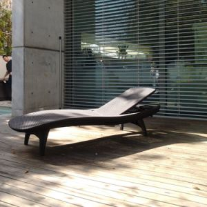 Well Furnir T-076 Valentines Chairs Outdoor Chaise Lounge pictures & photos