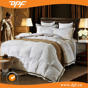 Hot Sale Soft 100% Cotton Quilt /Comforter Set/Hotel Polyester Duvet pictures & photos
