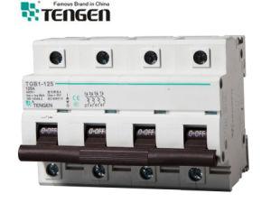Tgb1-125 4p 6ka Circuit Breaker pictures & photos