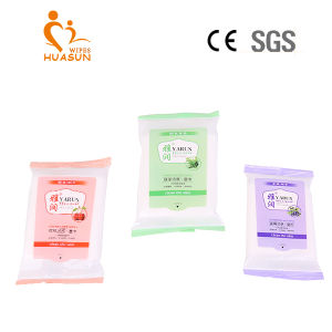 10 PCS Bag Thickening Type Skin Care Wet Wipes pictures & photos