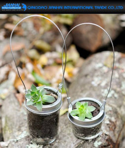 Table Plant Vase Decoration Glass Jar with Metal Handle pictures & photos