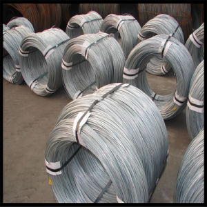 ISO Certificate Bwg16 Electro Galvanized Wire pictures & photos