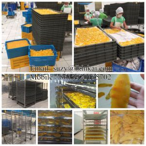 Guangzhou Supplier Industrial Fruit Dehydrator/ Food Dryer/Food Dehydrator pictures & photos