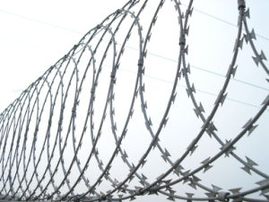 Hot Dipped Galvanized Razor Barbed Steel Wire Mesh pictures & photos