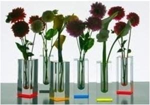 Acrylic Vase Sc5302