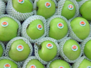Fresh Green Gala Apple for Exporting pictures & photos