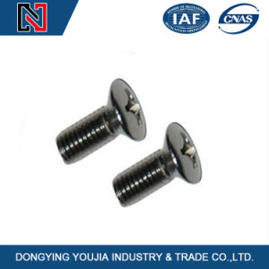 Stainless Steel DIN965 Cross Recessed Countersunk Head Machine Screw pictures & photos