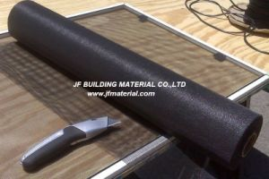 Insect Screen Mesh Insect Netting pictures & photos