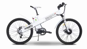 Electric Bike with Shimano Inter-3speed