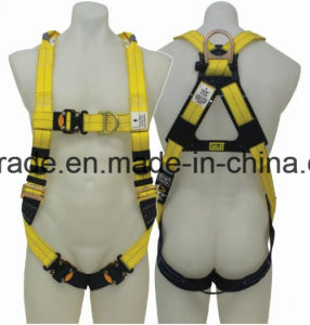 Ce Approved Fall Protection Safety Harness pictures & photos