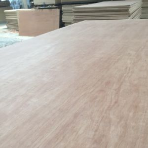 6mm Bintangor/Commercial Plywood for Furniture/Decoration pictures & photos