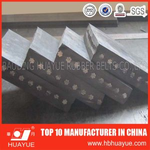 St Steel Cord Rubber Belt (ST630-6300) pictures & photos