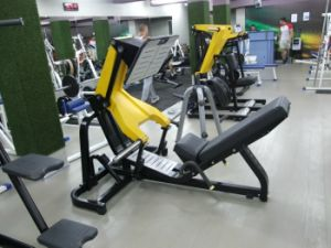 Tz-6066 Commercial Hammer Strength Fitness Equipment pictures & photos