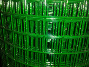 PVC Coated Welded Wire Mesh in Good Price pictures & photos