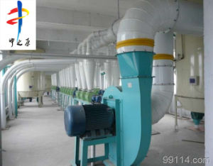 Professional Supplier 120 T/D Rice Flour Machine with Ce pictures & photos